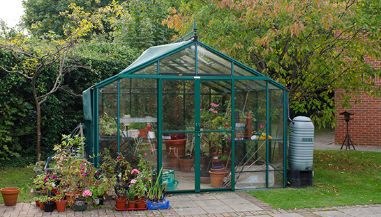 Greenhouse at Duchess of Kent Hospice