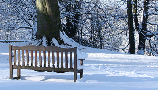 Leckhampton Court Hospice bench in the snow