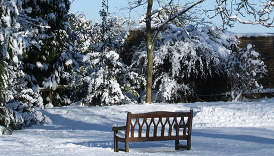 Leckhampton Court Hospice bench and snow-covered trees