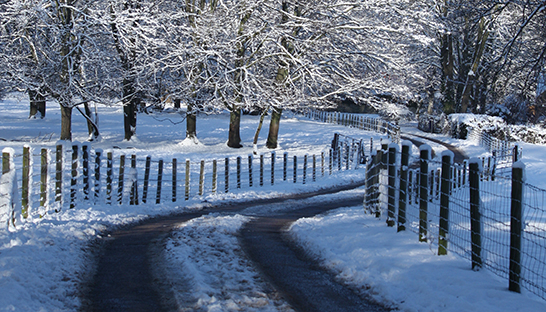 Snow-cleared lane at Leckhampton Court Hospice