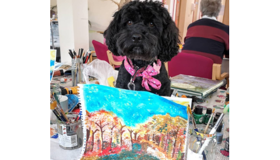 Bella the Pets as Therapy dog helping out with art therapy