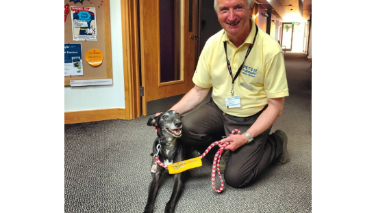 Volunteer Peter and therapy greyhound Maggie