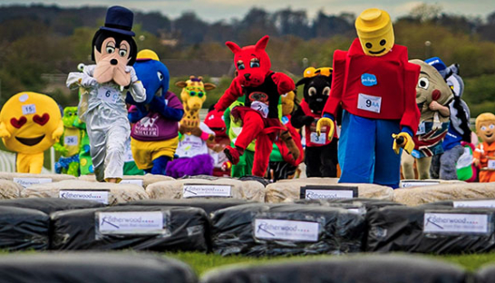Mascots scale the jumps during the Mascot Gold Cup 2019