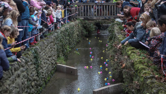 People standing and cheering at the water's edge for National Rubber Duck Day