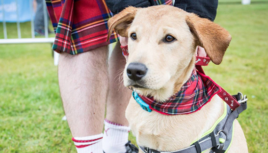 A Kiltwalk participant standing with their dog, all dressed in tartan