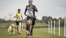 Runners with their dogs in the race