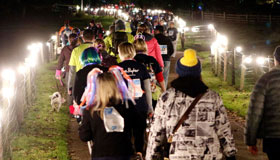 A line of hikers on a lighted path for Starlight Hike 2020.